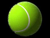ball_version2.jpg (76218 bytes)